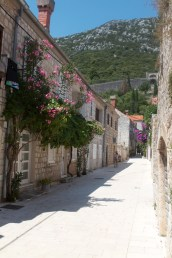 The streets of Ston