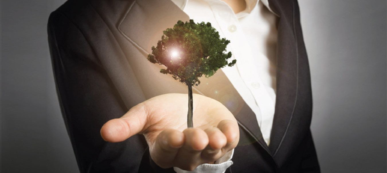 5 Lessons for Small Business Growth
