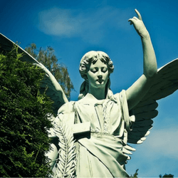 Host an angel festival to raise money for your church or religious organization.