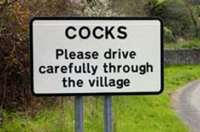 Cocks, Cornwall, UK
