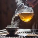 Monkey Picked Oolong Tea at Fusion Teas
