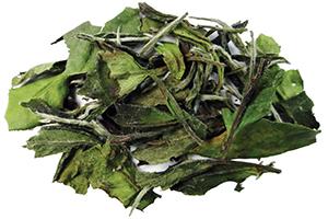 Bai Mu Dan White Tea Anti Aging Tea