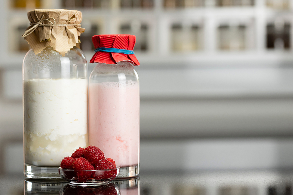 Buy Organic Milk Kefir Grains at Fusion Teas