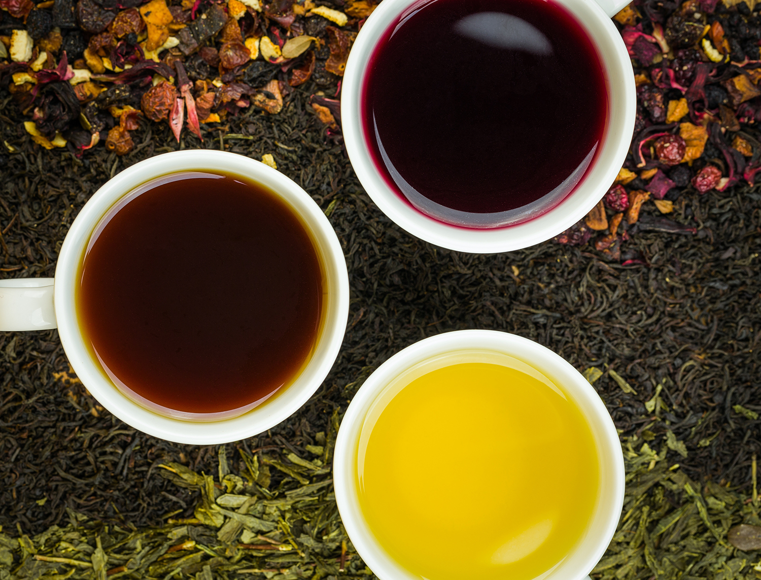 Fusion wholesale teas program
