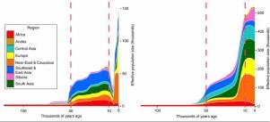 Genetischer Flaschenhals nach Karmin et al. 2015