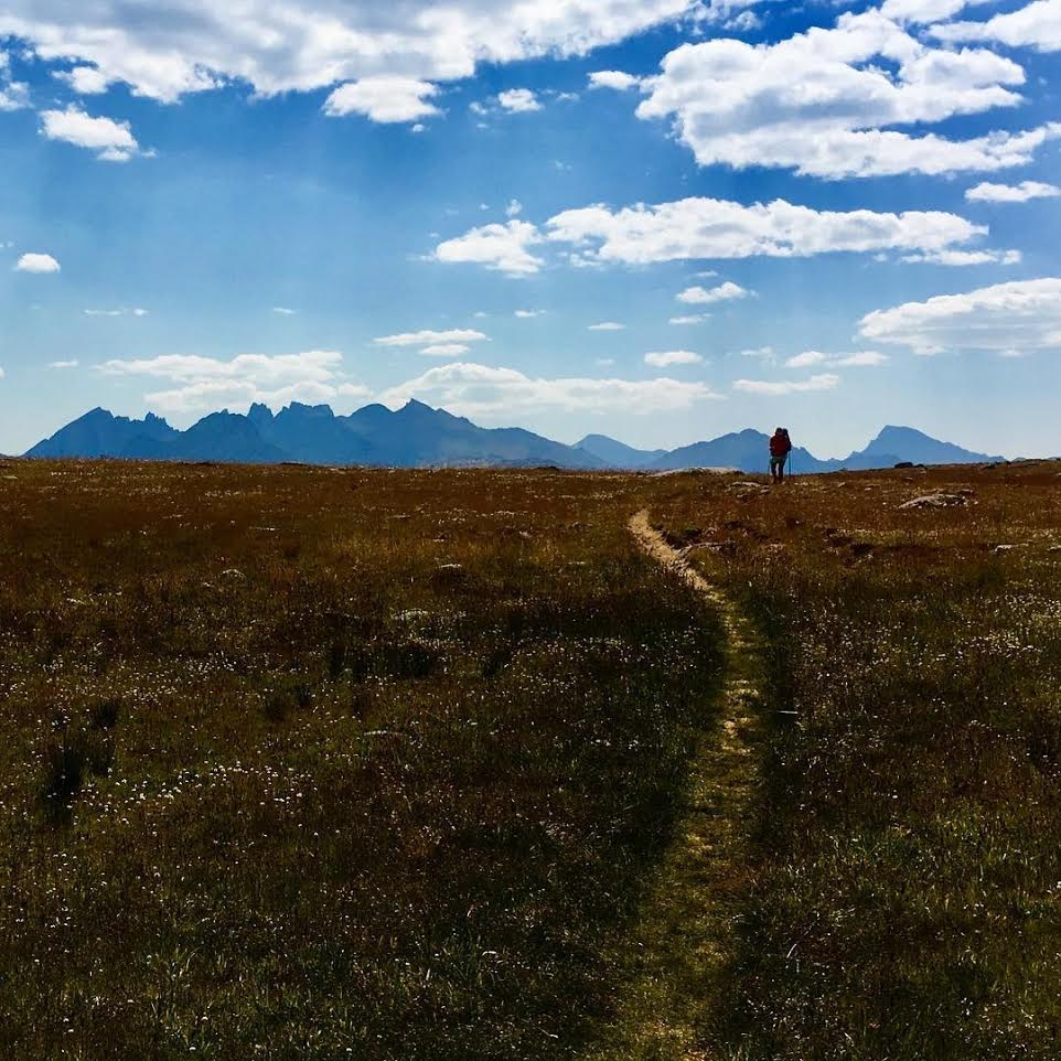 A backpacker hikes down a trail through a meadow, towards tall peaks on the horizon.