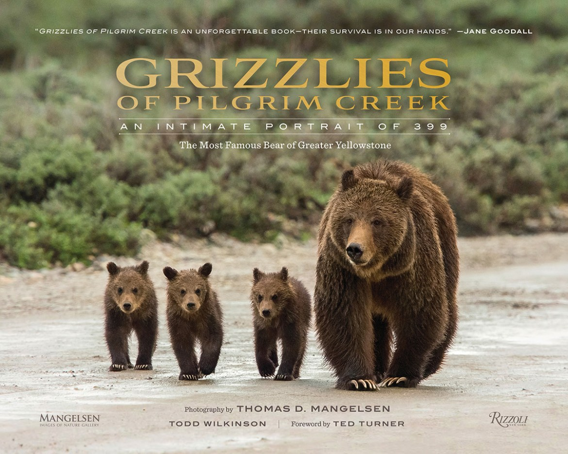 """The cover of """"Grizzlies of Pilgrim Creek: An Intimate Portrait of 399"""" shoes Grizz with three of her cubs walking down a beach."""
