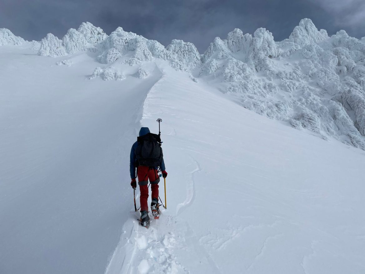 A person walks away from the camera up a snowfield. They are wearing crampons, holding ice axes, and have on a backpack and down coat.