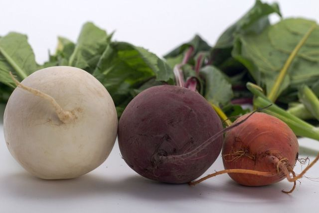 variedades-remolacha