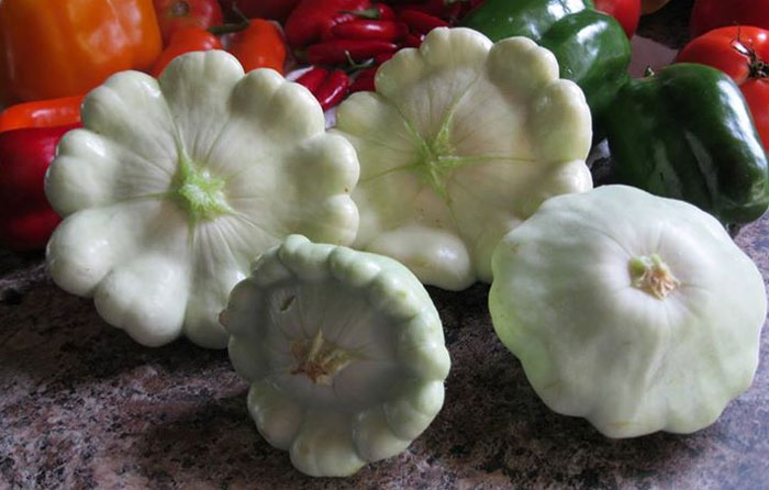 Pattypan Squash Compact Productive And A Little Nutty