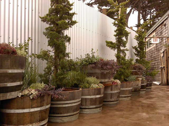 Diy Vertical Wall Planters