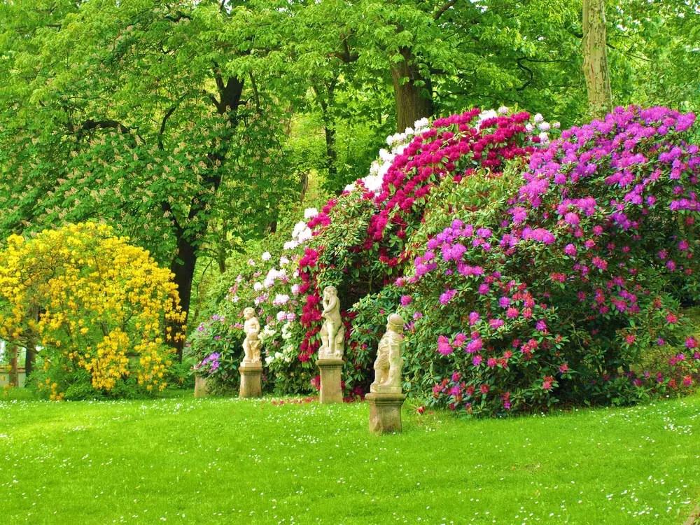 23 Super Cool Backyard Garden Ideas (PHOTOS) on Back Garden Ideas id=30269