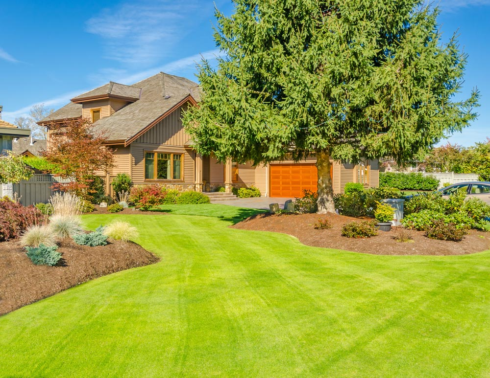 22 Appealing Front Yard Landscaping Ideas and Designs ... on Big Backyard Landscaping Ideas id=28457