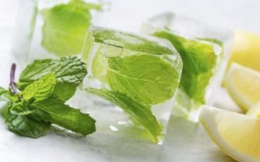 fresh herb cocktail