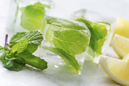 cocktail mint ice cubes