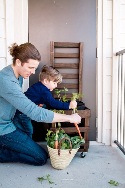 urbanite gardening