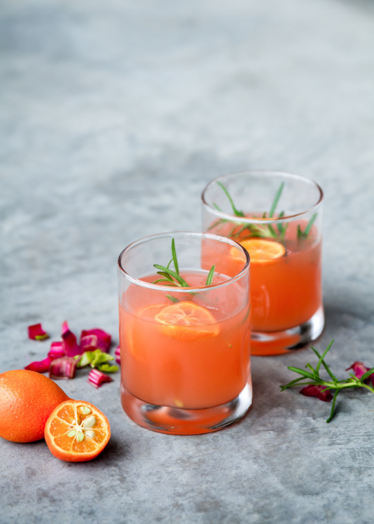 fizzy rhubarb fall cocktail