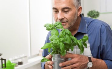 Man with Basil Plant