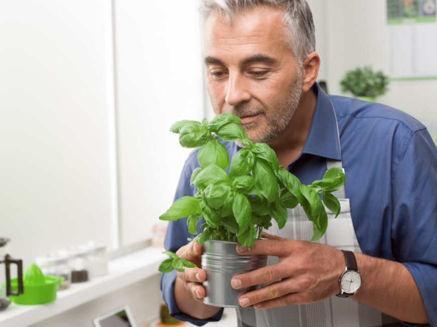 Man with Basil Plant showing gratitude