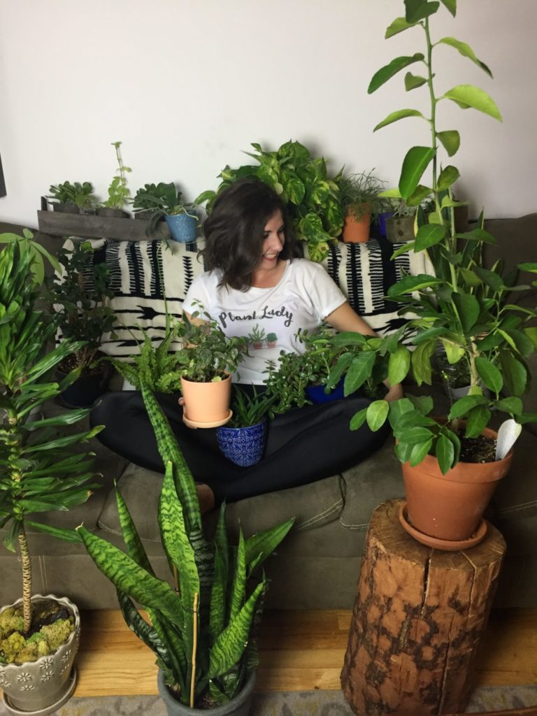 Plants and Maria