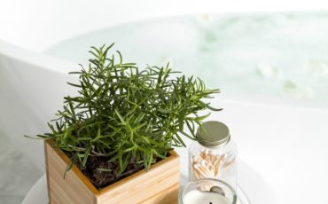 decorating with herbs by tub