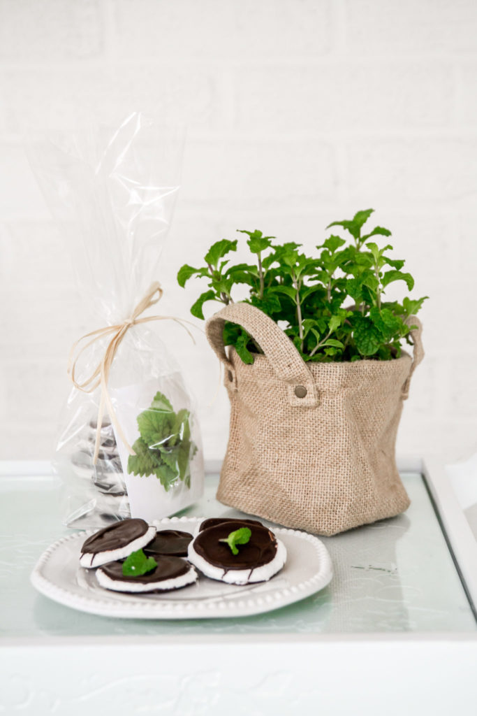 holiday gifts mint gift set