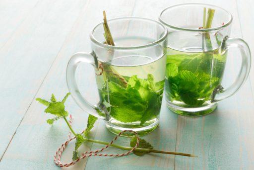 green tea to hydrate