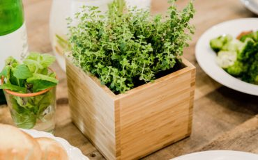 takeout tips: inbox of herbs aside carryout