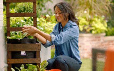vegetable container gardens wellness benefits: meditation