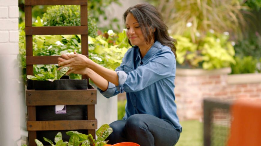 vegetable container gardens wellness benefits: meditation