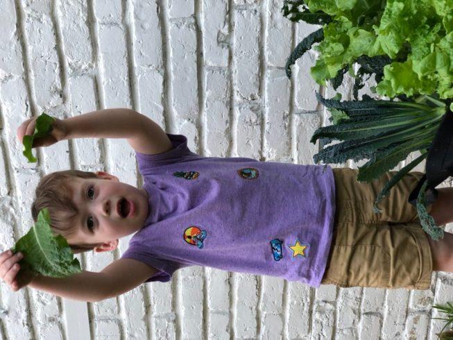 Child With A Joyful Harvest