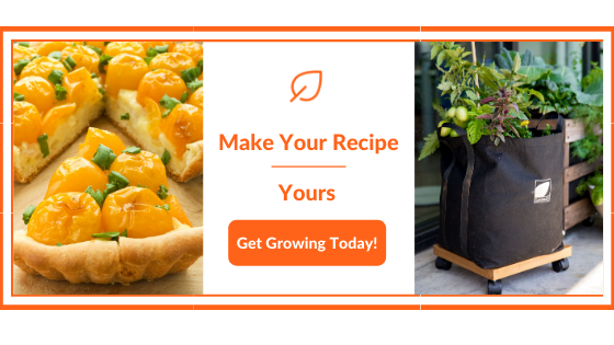 Thanksgiving Vegan Recipes