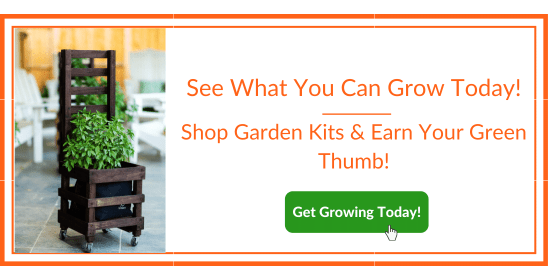 Garden Kit - See what you can grow