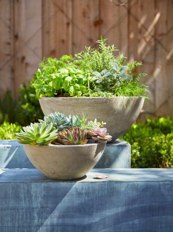Herb Garden in Concrete Planters