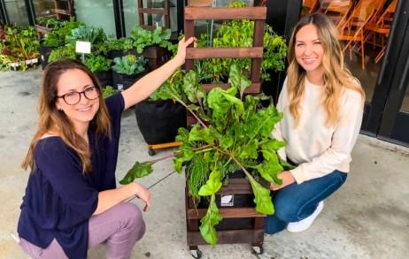 Beka & Cara The Grow Pro Team