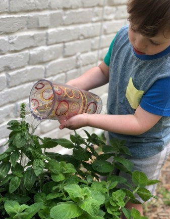 Child Watering a Hot Weather Garden