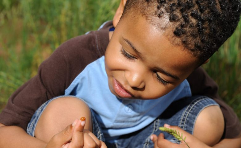 Child Playing with Ladybug