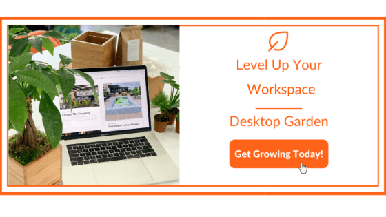 Work From Home Refresh - Garden