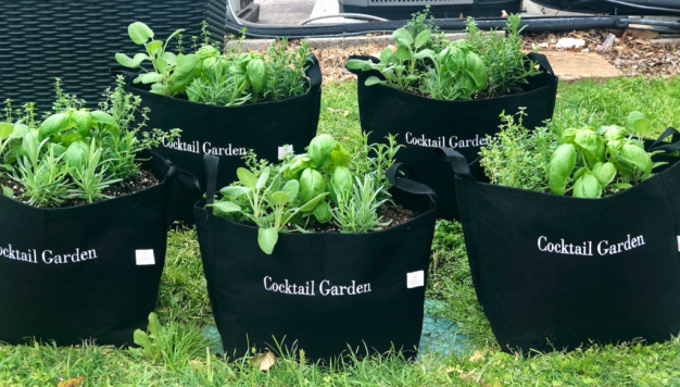 Gardenuity's Perfect Container Gardens