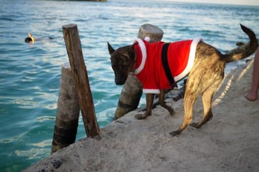Belize - Vianoce na piesku