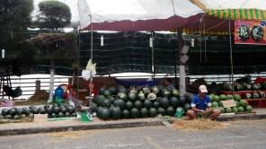 Bến Tre: vyrezávané melóny k Novému roku
