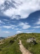 真夏のそれとは違う高い雲