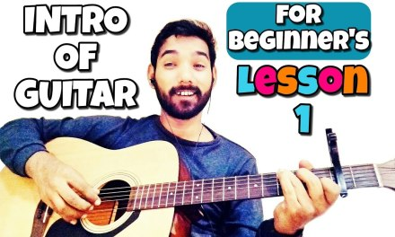Basic Guitar Lesson 1 for Beginners in (Hindi) by   Acoustic Pahadi  