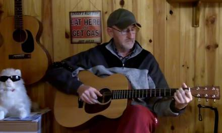 Blues And Country Fingerpicking Guitar Lessons Dvd