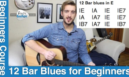 Blues Guitar Tutorial for Beginners  – 12 Bar blues in E (Level 7 #6)