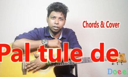 Pal tule de – Guitar Lessons