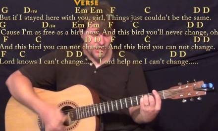 Freebird – Strum Guitar Cover Lesson with Chords/Lyrics