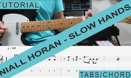 Niall Horan – Slow Hands, TAB, guitar lesson, Tutorial, Chords, Strumming, RIFF, LICKS, How to Play