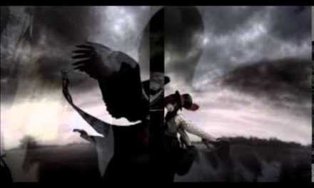 """Snowy White, Bird of Paradise Guitar Backing Track"""