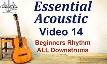 Beginners Acoustic – Beginners Rhythm Guitar – Drue James – Video 14